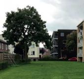 Leiden één van de tien BiodiverCities in Europa