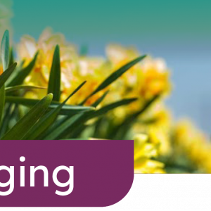 GreenportLIVE: Agrotoerisme, over 'houden van' toe