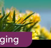 GreenportLIVE - Over 'houden van' toeristen    Agrotoeristische kansen in de Duin- en Bollenstreek